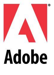 Adobe-10
